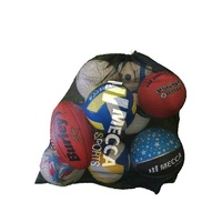 Mesh Ball Carry Bag